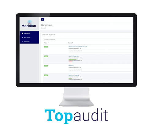 Topaudit audit software